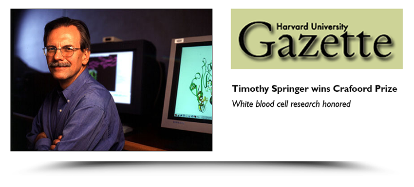 Timothy Springer, featured in the Harvard University Gazette